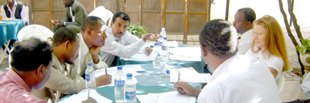 Photo: Participants exchange ideas at the workshop in Ethiopia.