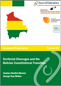 Territorial Cleavages and the Bolivian Constitutional Transition Number 25 Cover